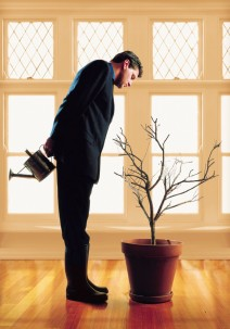 Man Watering a Plant