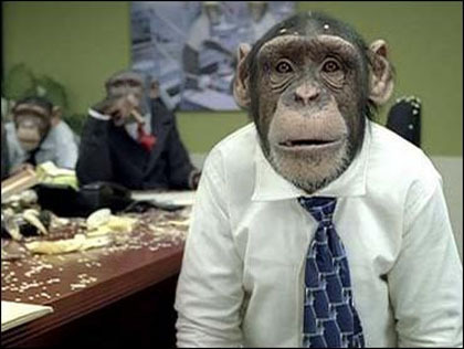 careerbuilder_chimpanzees_2006_1223